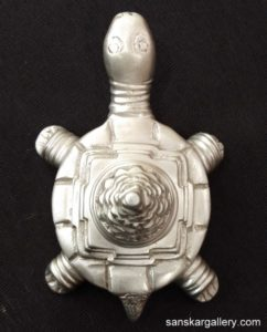 large tortoise_483x600